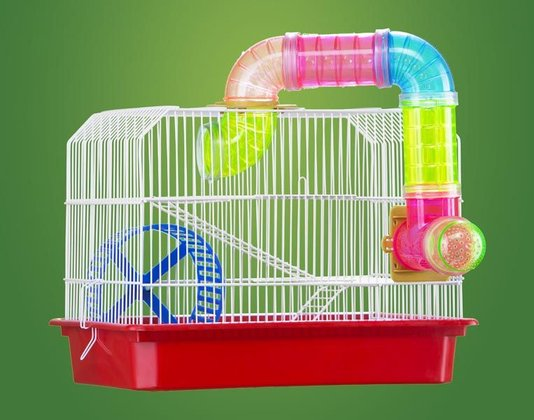 Gaiola Hamster RoedoresTubos Bandeja Plástica Verm. Londrina