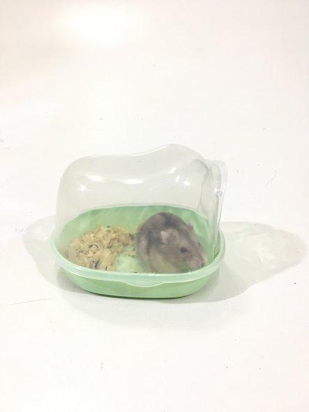 Banheiro Brinquedo Toca Hamster Porta Basculante