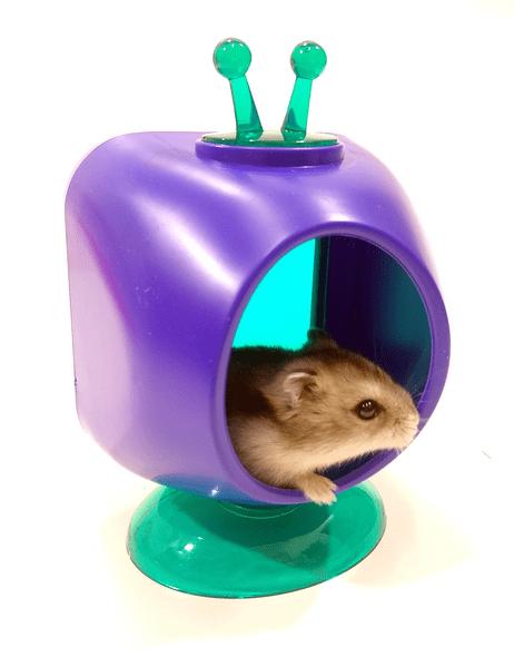 Casinha Toca Brinquedo Hamster-chinês TV Acrílico 10348